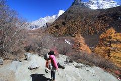 Kleurrijk landschap in China Royalty-vrije Stock Fotografie