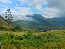 Kleurrijk landschap van Munnar, Kerala, India Stock Foto's