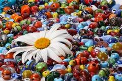 Kleurrijk parels en madeliefje Royalty-vrije Stock Fotografie