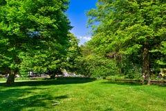 Kleurrijk park in de lentetijd. Royalty-vrije Stock Afbeeldingen