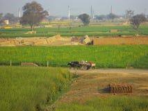 Kleurrijk platteland, India Royalty-vrije Stock Foto