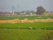 Kleurrijk platteland, India Stock Foto