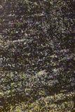 Kleurrijk schitter verf op een Zwarte achtergrond Royalty-vrije Stock Fotografie
