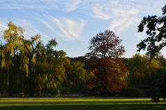 Kleurrijk Stadspark Stock Afbeeldingen