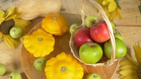 Kleurrijk stilleven Mening van hierboven Watermeloen, pompoen, appelen De herfstoogst 4k stock video