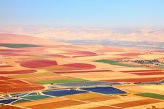 Kleurrijk tapijt van landbouw Stock Foto's