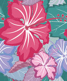 Kleurrijk tropisch bloemen naadloos patroon vector illustratie