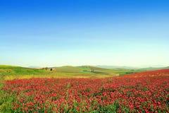 Kleurrijk valleilandschap. Italië Stock Afbeeldingen