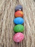 Kleurrijk van eieren op droge grasachtergrond, Pasen Royalty-vrije Stock Afbeeldingen