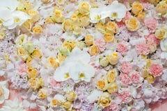 kleurrijk van rozenachtergrond - natuurlijke textuur van liefde Stock Afbeeldingen
