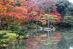 Kleurrijk van seizoen Stock Afbeeldingen