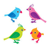 Kleurrijk van vogels Stock Foto's