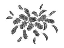 Kleurrijk verenborduurwerk om regeling Indische de vogel klassieke geborduurde achtergrond van Boho stammenkleren royalty-vrije illustratie