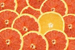 Kleurrijk vers sinaasappelenthema als achtergrond Royalty-vrije Stock Afbeeldingen
