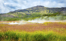 Kleurrijk vulkanisch geiserlandschap bij het geothermische gebied van Haukadalur in IJsland Royalty-vrije Stock Fotografie