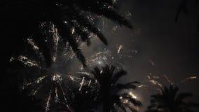 Kleurrijk vuurwerk bij vakantienacht stock footage
