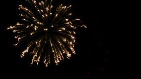 Kleurrijk vuurwerk met hart in def. bij zwart BG stock video