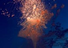 Kleurrijk vuurwerk op de donkere achtergrond van de nachthemel Vakantielicht Stock Foto's