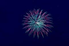 Kleurrijk vuurwerk op de donkere hemelachtergrond Royalty-vrije Stock Foto's