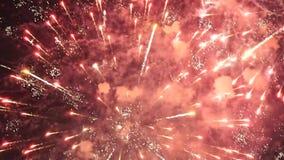 Kleurrijk vuurwerk op zwarte achtergrond stock footage