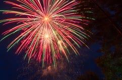 Kleurrijk vuurwerk tegen de donkerblauwe hemel en de bomen Stock Afbeeldingen