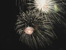 Kleurrijk vuurwerk van divers kleurenlicht omhoog de nachthemel Stock Foto's