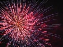 Kleurrijk vuurwerk van divers kleurenlicht omhoog de nachthemel Royalty-vrije Stock Foto
