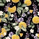 Kleurrijk waterverfpatroon met lavendelbloemen, anemonen, en oranje vruchten Stock Foto's