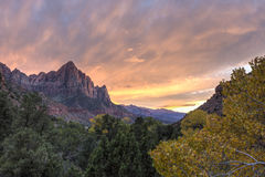 Kleurrijk Zion Canyon Autumn Sunset royalty-vrije stock fotografie