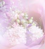 Kleurrijk zoet die bloemboeket op achtergrond wordt geïsoleerd close-up Stock Foto's
