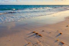 Kleurrijk zonsopganglandschap, de kust van de Atlantische Oceaan Stock Foto