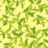 Kleurrijke achtergrond met bladeren. vector illustratie