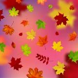 Kleurrijke achtergrond met de herfstbladeren Royalty-vrije Stock Afbeeldingen