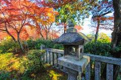 Kleurrijke achtergrond rond een steenpost Royalty-vrije Stock Foto's