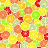 Kleurrijke achtergrond van plakken en plakken van citrusvruchten van sinaasappel, kalk, grapefruit, mandarijn, citroen en pompelm royalty-vrije illustratie