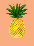 Kleurrijke ananas Royalty-vrije Stock Fotografie