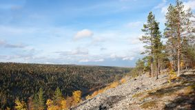 Kleurrijke Autum-Vallei in Taiga, Finland stock afbeelding