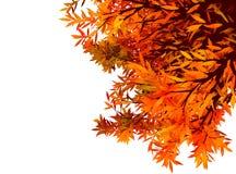 Kleurrijke autumachtergrond met bladeren Stock Afbeelding