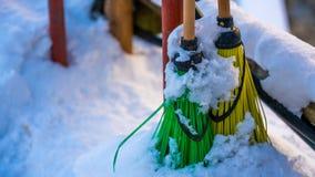 Kleurrijke Bezems op Sneeuwlandschap stock afbeelding