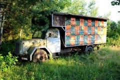 Kleurrijke bijenkorf op oude uitstekende vrachtwagen in lokaal bos vooraanzicht royalty-vrije stock fotografie