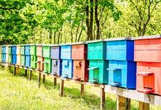 Kleurrijke Bijenkorven op een rij Stock Afbeelding