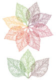 Kleurrijke bladbloem, vector vector illustratie