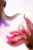 Kleurrijke blauwe en roze pijlinktvissen Stock Afbeelding