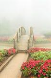 Kleurrijke bloem en houten brug in mooie tuin met regenmist Stock Afbeeldingen