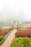 Kleurrijke bloem en houten brug in mooie tuin met regenmist Stock Afbeelding