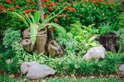 Kleurrijke bloem openluchttuin met rots Royalty-vrije Stock Afbeelding