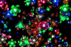 Kleurrijke Bloem van Licht Royalty-vrije Stock Foto