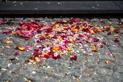 Kleurrijke bloembloemblaadjes op treden op registratiebureau royalty-vrije stock foto's