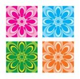 Kleurrijke bloemen Stock Afbeeldingen
