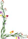 Kleurrijke Bloemen de Zomer hoekige grens Royalty-vrije Stock Afbeeldingen